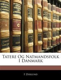 Tatere Og Natmandsfolk I Danmark
