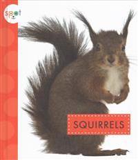La Ardilla (Squirrels)