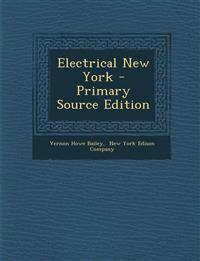 Electrical New York - Primary Source Edition