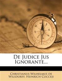 De Judice Jus Ignorante...