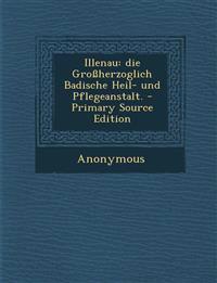 Illenau: Die Grossherzoglich Badische Heil- Und Pflegeanstalt. - Primary Source Edition