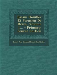Bassin Houiller Et Permien De Brive, Volume 1... - Primary Source Edition