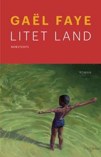 Litet land - Gaël Faye - böcker (9789113077307)     Bokhandel