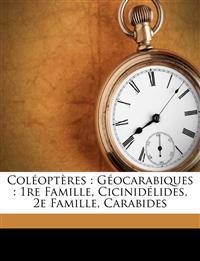 Coléoptères : Géocarabiques : 1re famille, Cicinidélides, 2e famille, Carabides