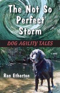 The Not So Perfect Storm