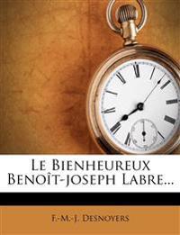 Le Bienheureux Benoît-joseph Labre...
