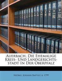Auerbach, die ehemalige Kreis- und Landgerichts-Stadt in der Oberpfalz.
