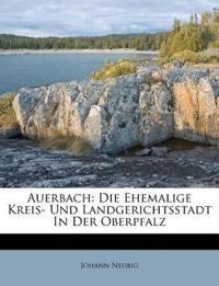 Auerbach, die ehemalige Kreis- und Landgerichts-Stadt in der Oberpfalz