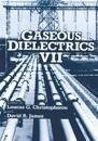 Gaseous Dielectrics VII
