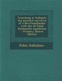 Trenching at Gallipoli; The Personal Narrative of a Newfoundlander with the Ill-Fated Dardanelles Expedition