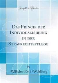 Das Princip der Individualisirung in der Strafrechtspflege (Classic Reprint)
