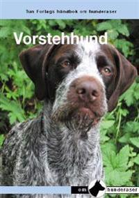De Duitse staande hond