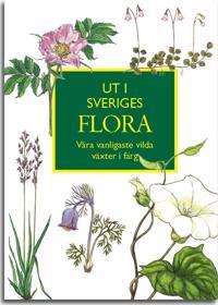 Ut i Sveriges Flora: våra vanligaste vilda växter i färg