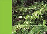 Beauty in the pine