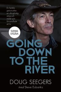 Going down to the river : en hemlös gatumusiker, en oförglömlig sång och mötet som förvandlade ett liv