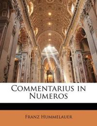 Commentarius in Numeros