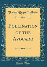 Pollination of the Avocado (Classic Reprint)