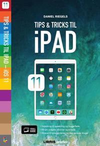 iPad iOS11