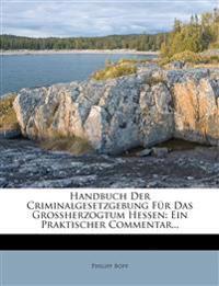 Handbuch Der Criminalgesetzgebung Für Das Großherzogtum Hessen: Ein Praktischer Commentar...