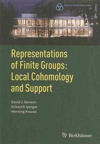 Representations of Finite Groups: