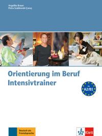 Orientierung im Beruf - Intensivtrainer mit Audio-CD