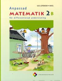 Anpassad matematik 2 B