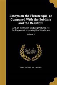 ESSAYS ON THE PICTURESQUE AS C