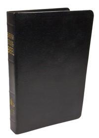 Svensk studiebibel : bibeltext: Svenska folkbibeln 2015