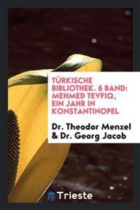 Türkische Bibliothek. 6 Band: Mehmed Tevfiq, Ein Jahr in Konstantinopel