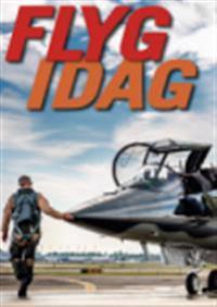 Flyg idag : flygets årsbok 2017