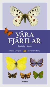 Våra fjärilar : dagfjärilar i Norden