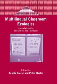 Multilingual Classroom Ecologies