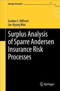 Surplus Analysis of Sparre Andersen Insurance Risk Processes