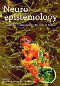 Neuroepistemology