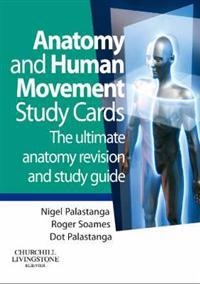 Anatomy and Human Movement Study Cards