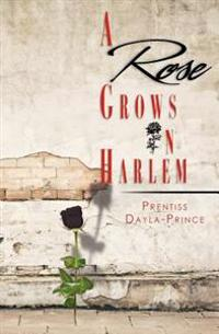 A Rose Grows in Harlem