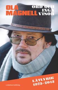 Ord och inga visor: låtlyrik 1973-2013