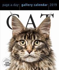 2019 Cat Gallery Page-A-Day Gallery Calendar