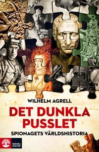 Det dunkla pusslet : spionagets historia - från faraos ögon och öron till global nätspaning