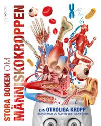 Stora boken om människokroppen : din fantastiska kropp som du aldrig förr sett den