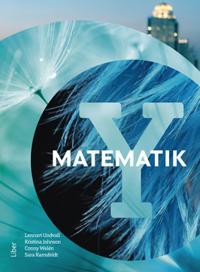 Matematik Y