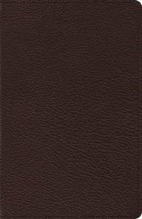 Heirloom Thinline Bible-ESV-Art Gilded