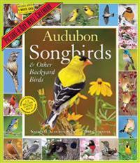 2019 Audubon Songbirds and Other Backyard Birds Picture-A-Day Wall Calendar