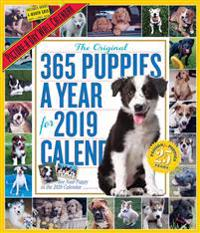 2019 365 Puppies a Year Picture-A-Day Wall Calendar