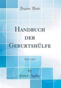 Handbuch Der Geburtsh lfe, Vol. 1 of 3 (Classic Reprint)