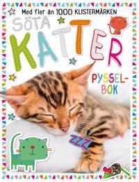 Söta katter : pysselbok