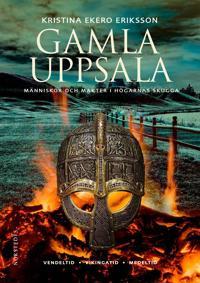 Gamla Uppsala : människor och makter i högarnas skugga
