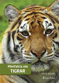 Minifakta om tigrar (CD + bok)