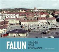 Falun Staden som försvann