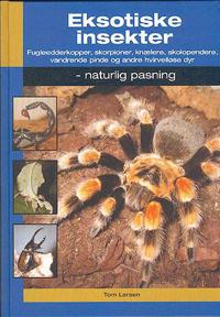 Eksotiske insekter